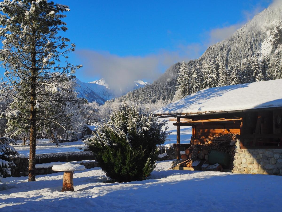 Winter: Sicht in den Garten